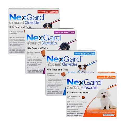 NexGard for Dogs